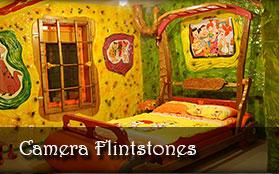 vezi detalii - Camera Flintstones