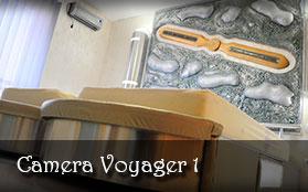 vezi detalii - Camera Voyager 1